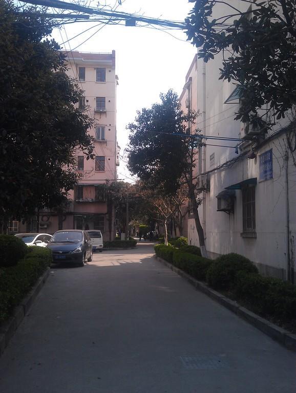 大华一村东区小区照片5
