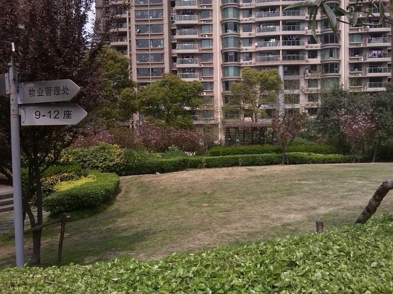 瑞虹新城二期小区照片11