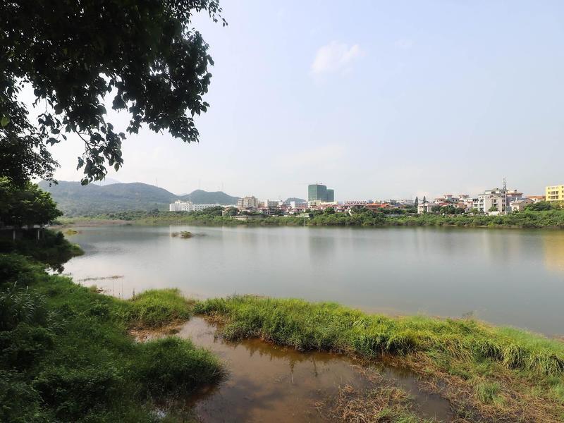 翠湖山庄小区照片16