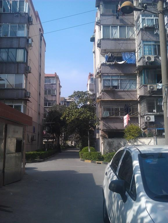 大华一村东区小区照片8