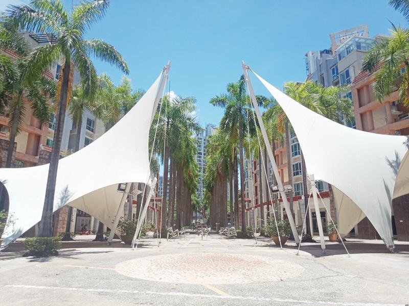 阳光棕榈园三期小区照片8