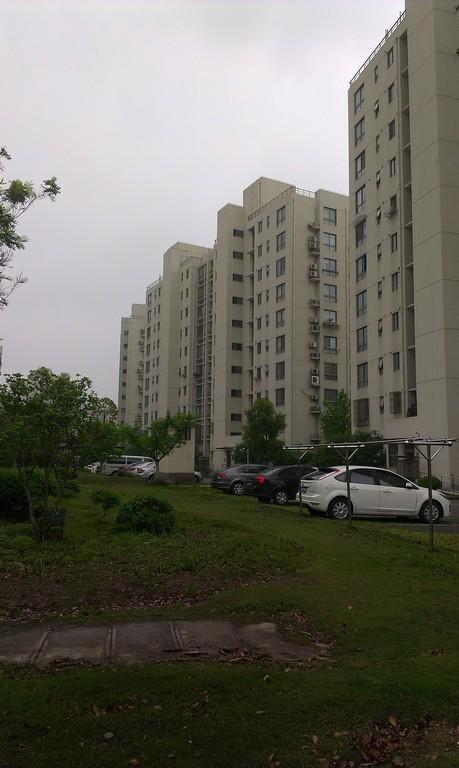 金橘新苑小区照片18