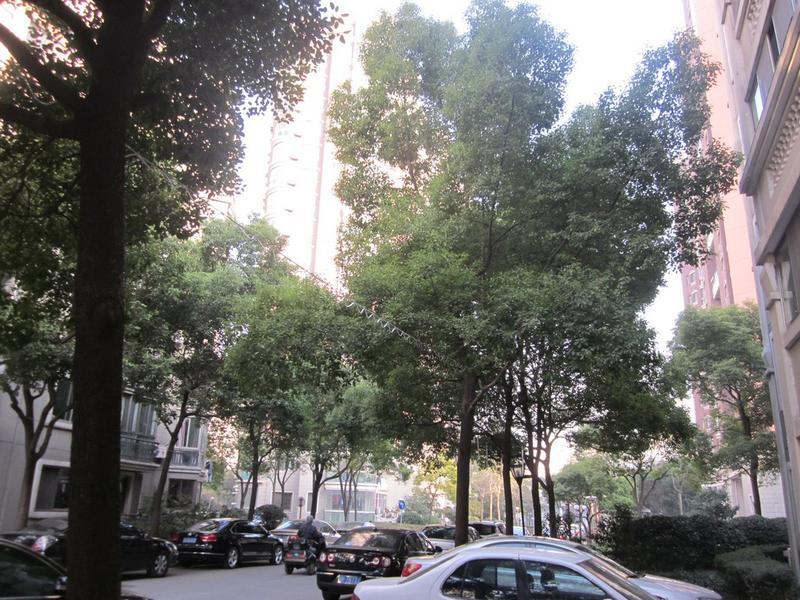万里真金苑小区照片14