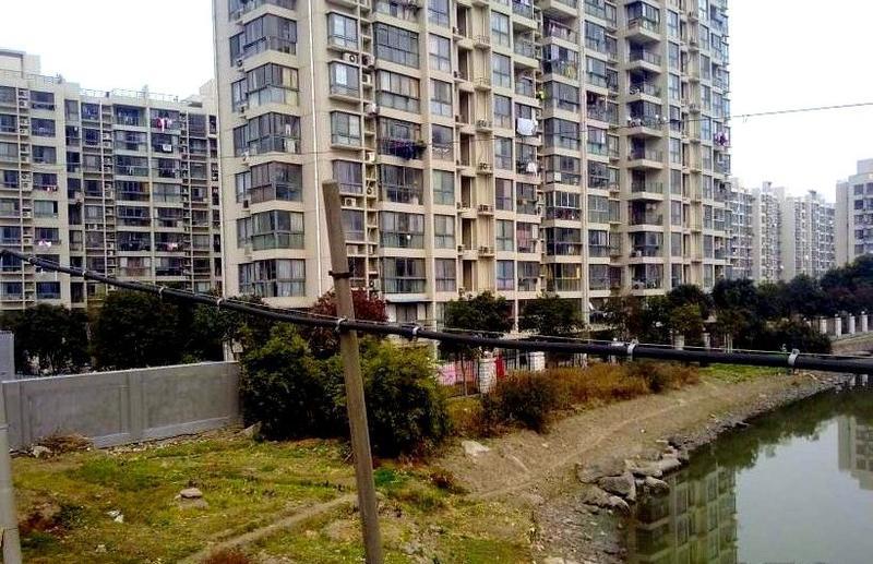 金橘新苑小区照片5