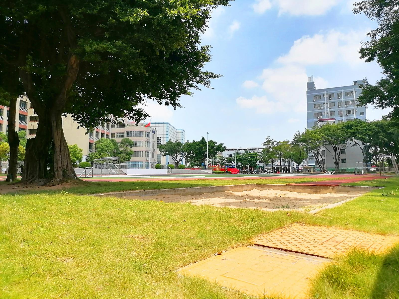 深圳市龙华清湖小学15