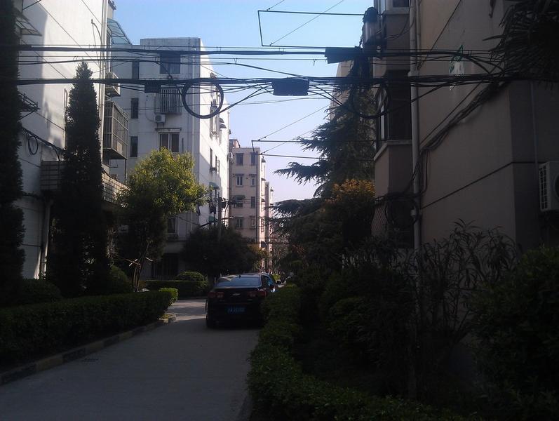 大华一村东区小区照片11