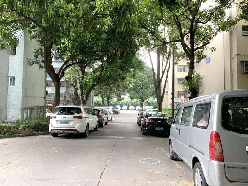 荔园新村小区照片2