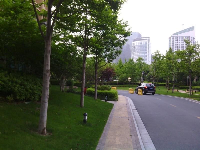 上海绿城小区照片12