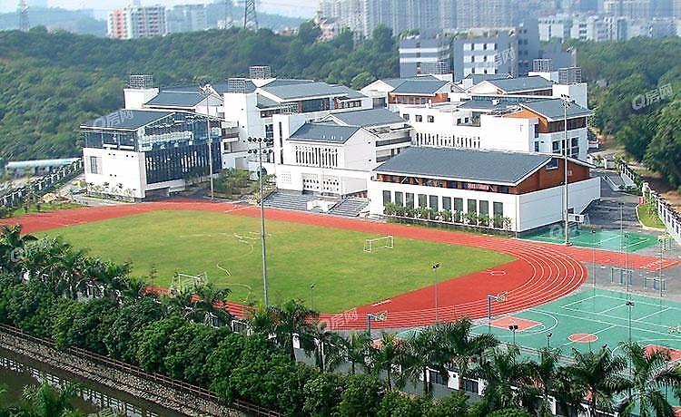 深圳大学城丽湖实验学校(初中部)13