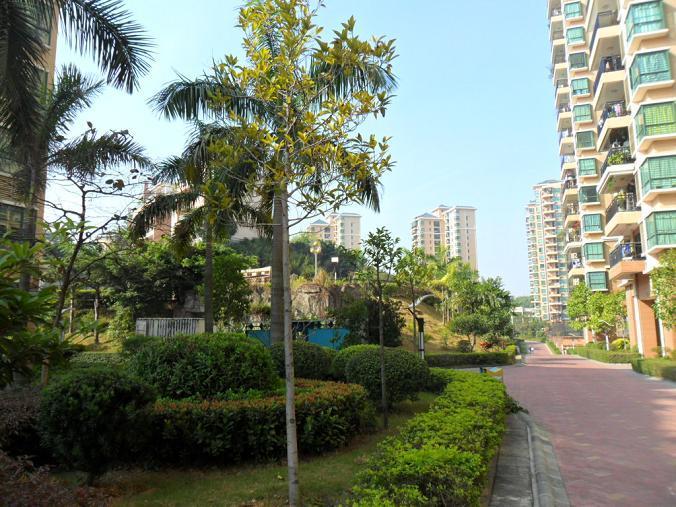 雍景城小区照片6