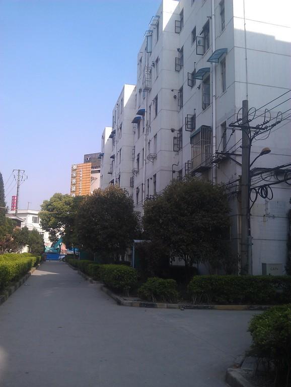 大华一村东区小区照片19