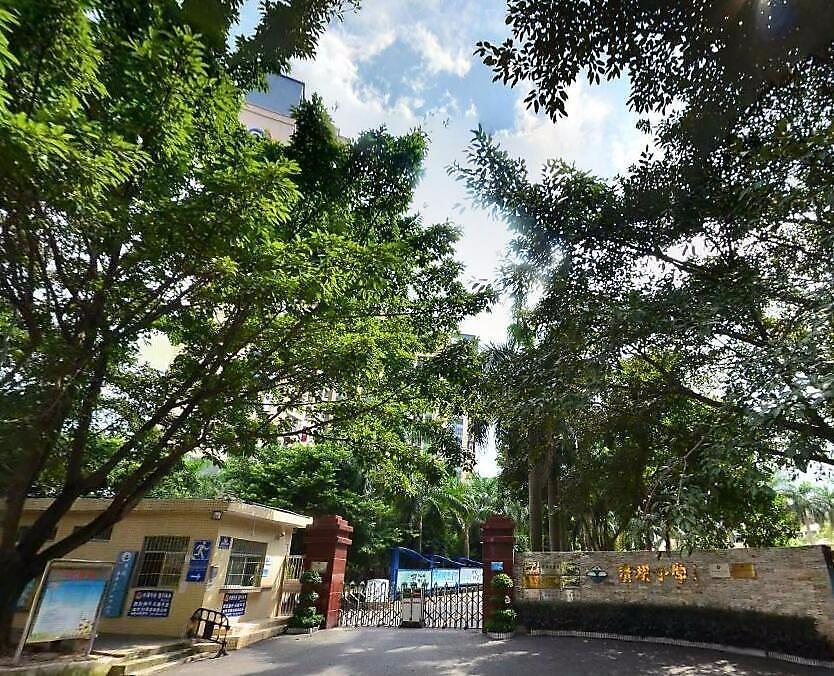 深圳市龙华清湖小学8