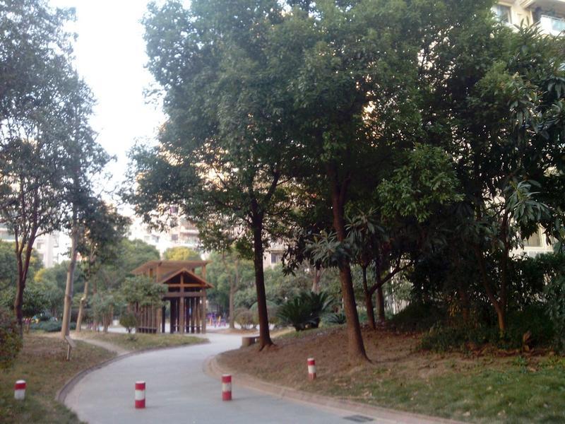 祁连新家园小区照片1