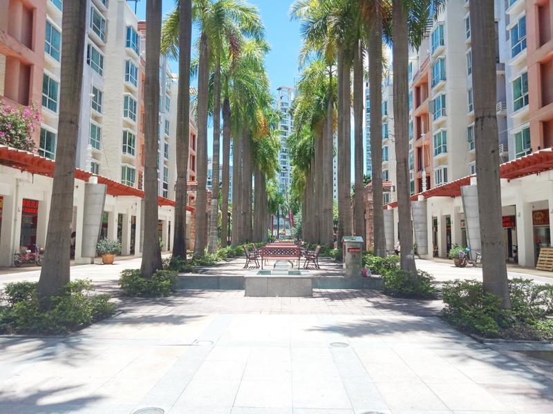 阳光棕榈园三期小区照片9