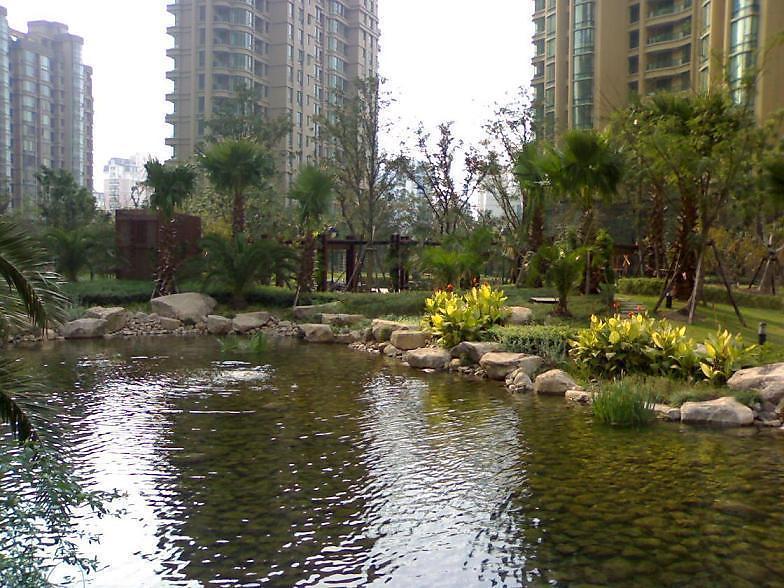 上海绿城小区照片10