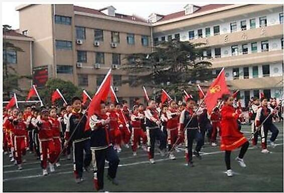 上海市宝山区新民实验学校(小学部)2