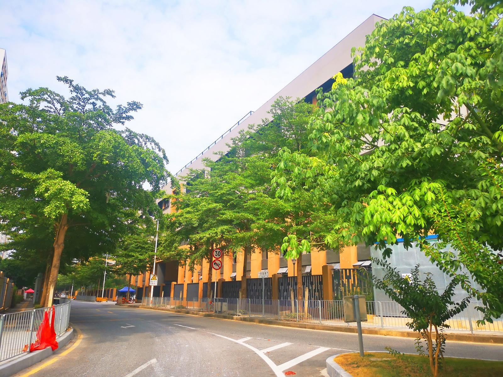 深圳市龙华新区龙腾学校(小学部)9
