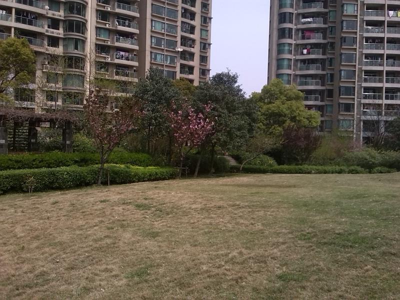 瑞虹新城二期小区照片7